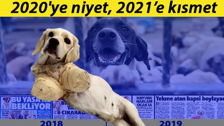 2020'ye niyet, 2021'e kısmet