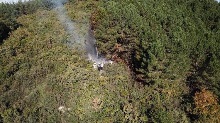 Son dakika haberler: İstanbul'da orman yangını!