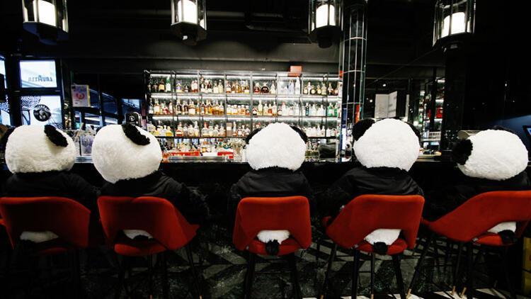 Oyuncak pandaları müşteri gibi ağırladı