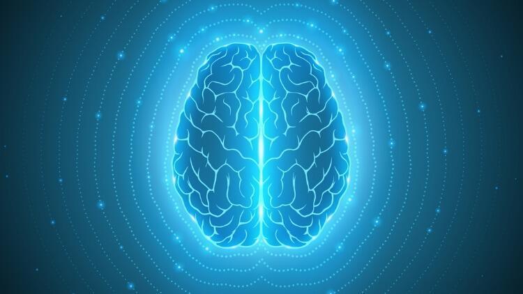 Egzersiz ile Beyin Hücrelerinin Yenilenmesi Mümkün mü?