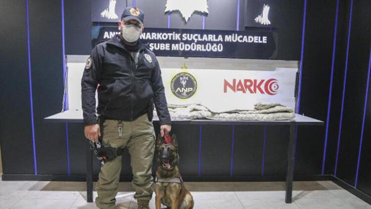 Ankara Polisi, Avustralya'ya gönderilecek yorganda 8 kilo uyuşturucu buldu