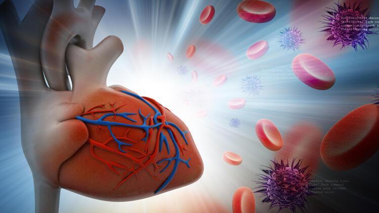 Covid-19 kalp hastalarını nasıl etkiler?