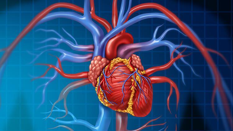 Covid-19'un kalp üzerindeki etkileri neler?