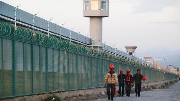 Çin'in yüz binlerce Uygur Türkü'nü pamuk tarlalarında çalışmaya zorladığı iddia edildi