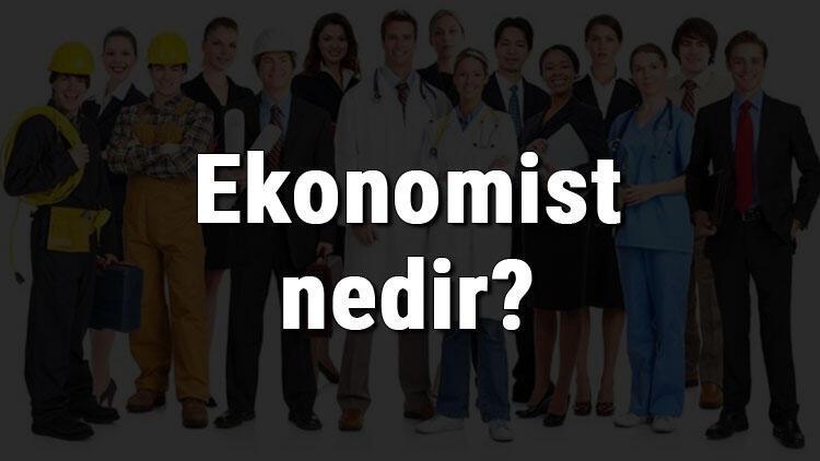 Ekonomist nedir, ne iş yapar ve nasıl olunur? Ekonomist olma şartları, maaşları ve iş imkanları