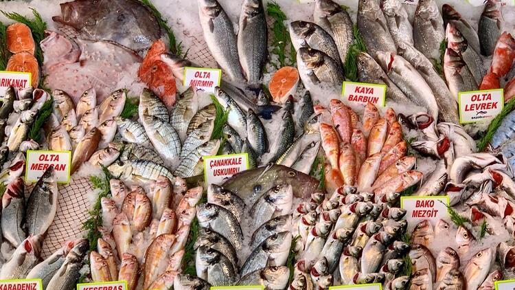 Deniz balıklarında büyük tehlike! Her lokmada plastik yiyoruz