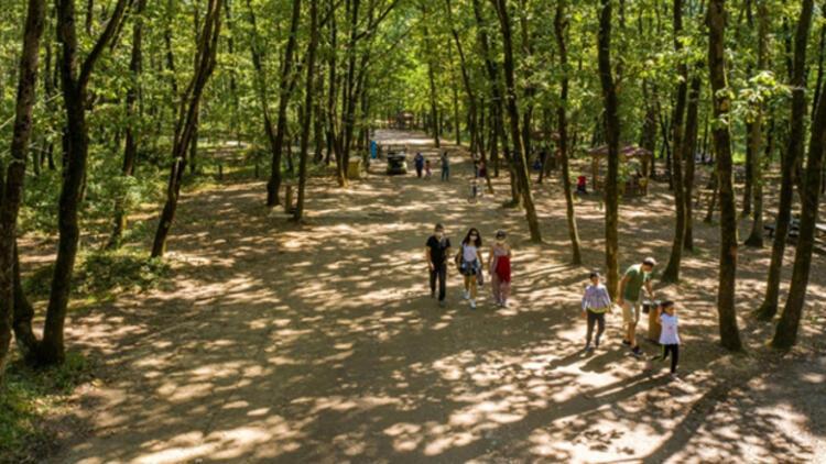 Avrupa'nın en büyük doğal yaşam parkı 5 milyon ziyaretçiyi ağırladı