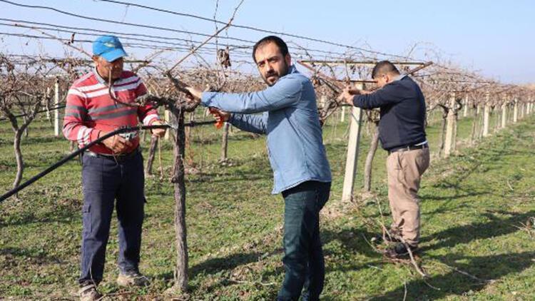 Kısıtlamadan muaf olan çiftçiler, tarlada çalıştı