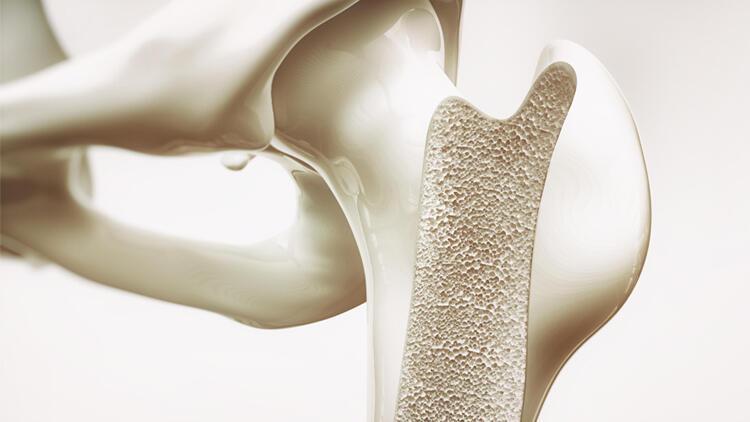 Güçlü kemiklerin sırrı! Bu vitamin ve minerallerle dost olun