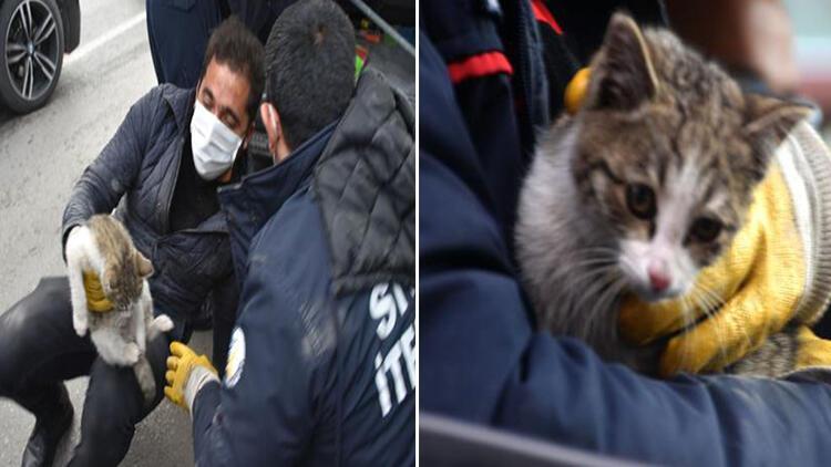 Hafif ticari aracın altına giren kedi, 2 saatte kurtarıldı