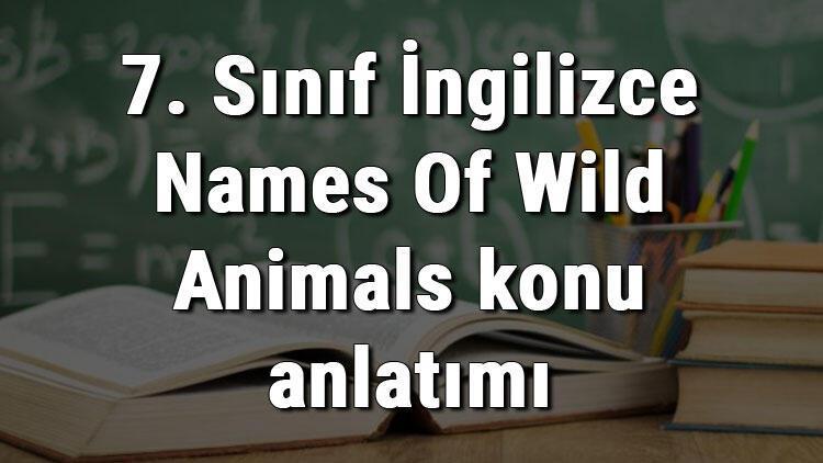 7. Sınıf İngilizce Names Of Wild Animals (Vahşi Hayvanların İsimleri) konu anlatımı