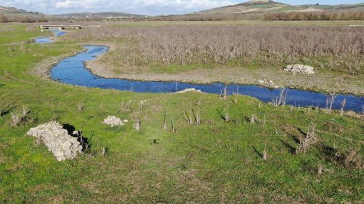 Sazlıdere'de sular çekildi, koyunların otladığı barajda köprü kalıntıları ortaya çıktı