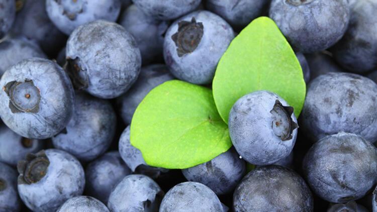 ABD'li doktordan alerjiye karşı doğal reçete; omega-3, yaban mersini ve brokoli