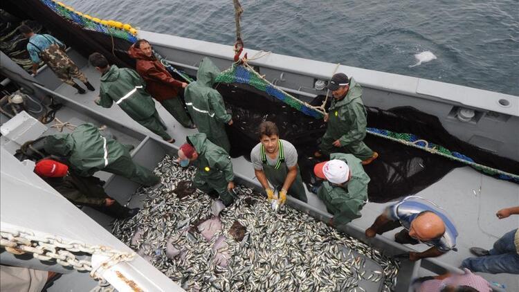 Son dakika...Tarım ve Orman Bakanlığı duyurdu! Hamside av yasağı uzatıldı