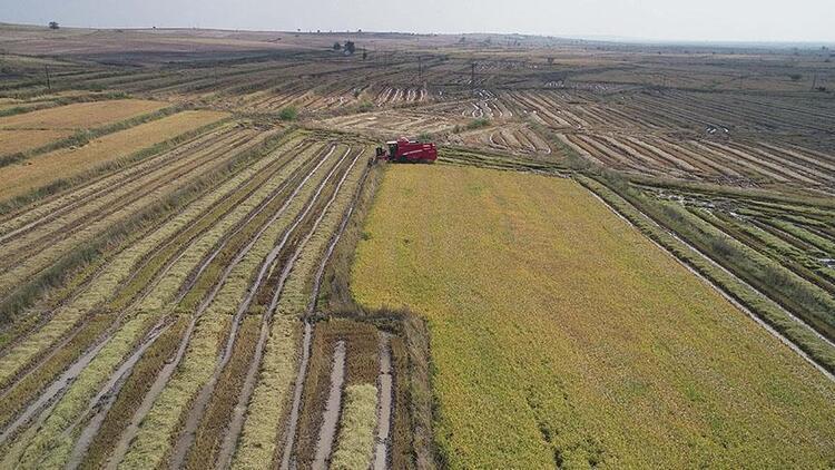 Tarımda modern sulama sistemlerinin oranı yüzde 94'e yükselecek