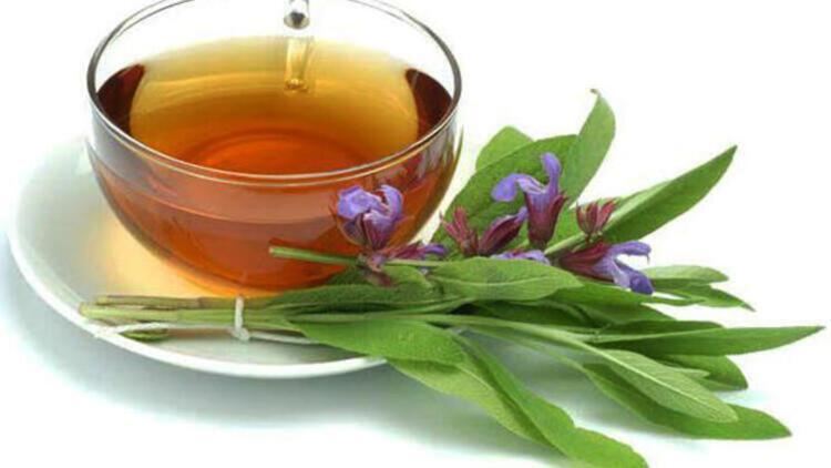 'Ada çayı bağışıklık sistemini güçlendirmede çok etkili'