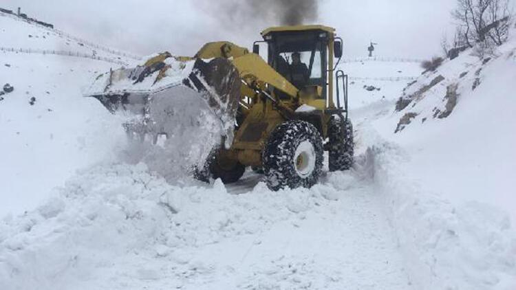 Şırnak'ta 17 köy ve 5 mezra yolu kardan kapandı