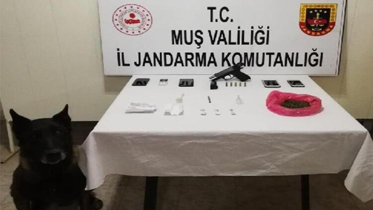 Muş'ta uyuşturucu operasyonu: 6 tutuklama