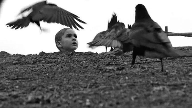 SİYAD'a göre 2020'nin en iyi yabancı filmi 'Boyalı Kuş'