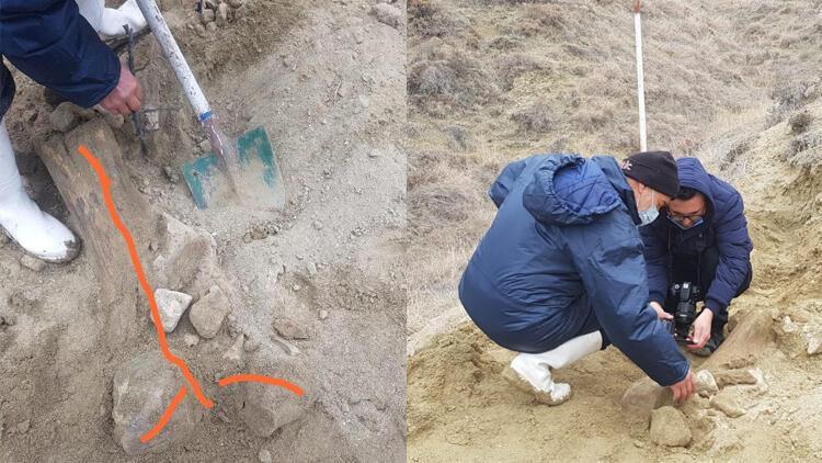 Su kuyusu kazısında 'fosil' bulmuşlar