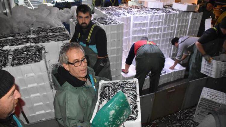 Balıkçılar, hamsi avının serbest olduğu İğneada'ya akın etti