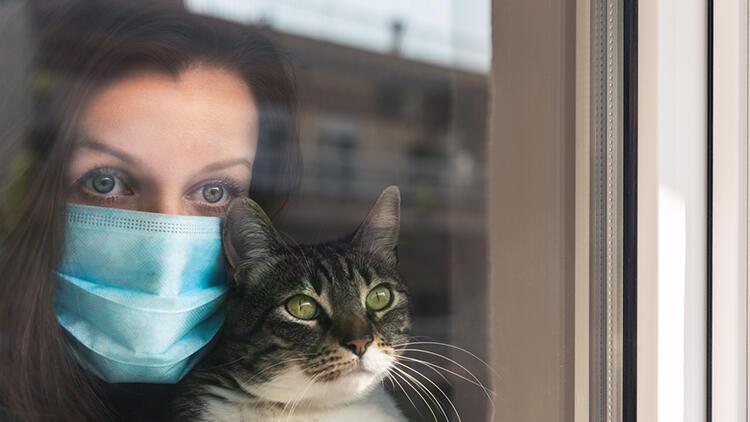 Bilim insanlarından evcil hayvanlar için kritik koronavirüs uyarısı!