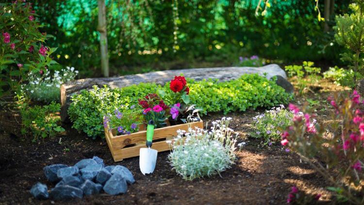 Küçük bahçenizi harika gösterecek ipuçları