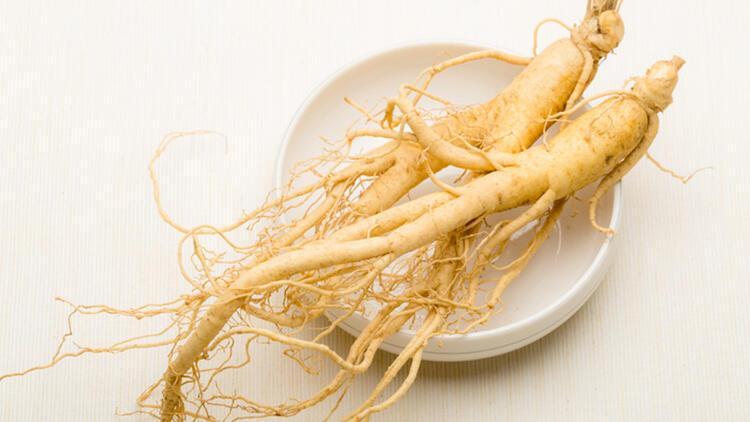 Hafızayı güçlendiriyor, üreme sağlığını olumlu etkiliyor… Ginsengin faydaları neler?