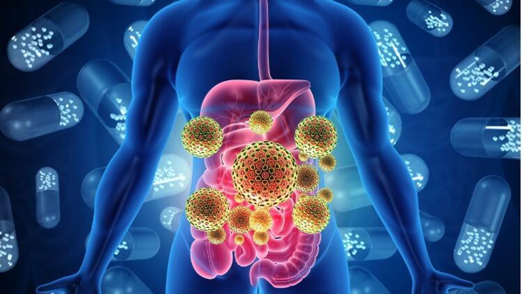 Bağırsak Florasındaki Hastalıklar Koronavirüse Davetiye Çıkarıyor