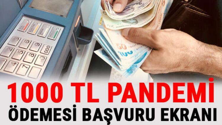 1000 TL pandemi ödemesi başvuru ve sonuç sorgulama detayları: T.C Kimlik no ile sorgulama sayfası
