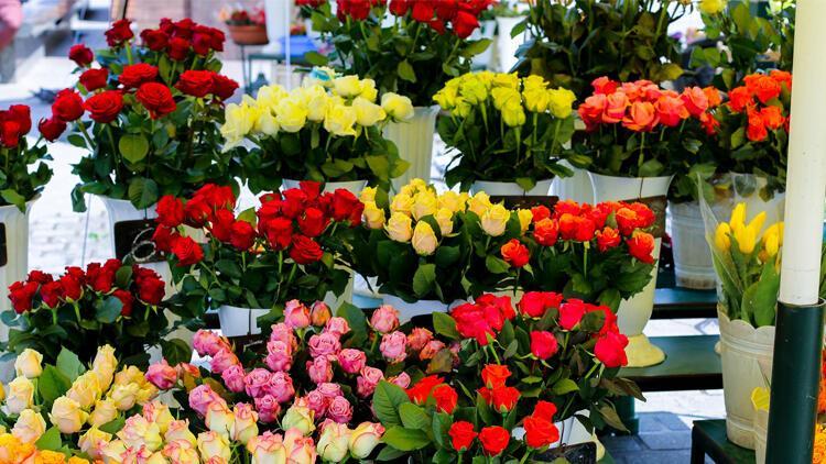 Çiçekçiler rekor kırıyor! Sadece Sevgililer Günü için 7 milyon dolar kazandılar
