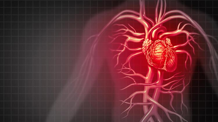 Ameliyatsız kalp kapak tedavi yöntemi
