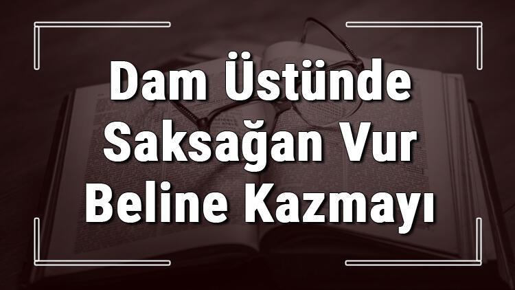 Dam Üstünde Saksağan Vur Beline Kazmayı atasözünün anlamı ve örnek cümle içinde kullanımı (TDK)