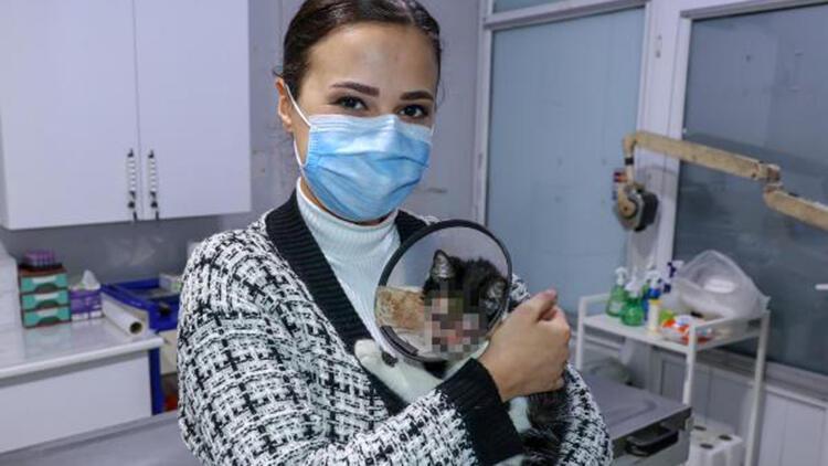 2 gözü de ampute edilen yavru kediye sahip çıktı
