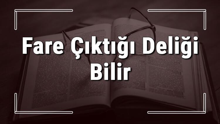 Fare Çıktığı Deliği Bilir atasözünün anlamı ve örnek cümle içinde kullanımı (TDK)