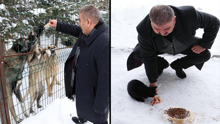Palandöken Belediye Başkanı Sunar, elleriyle sokak hayvanlarını besledi