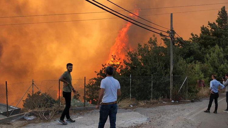 Ormanları yaktıran teröristin etkisiz hale getirilmesi, Hataylıları sevindirdi