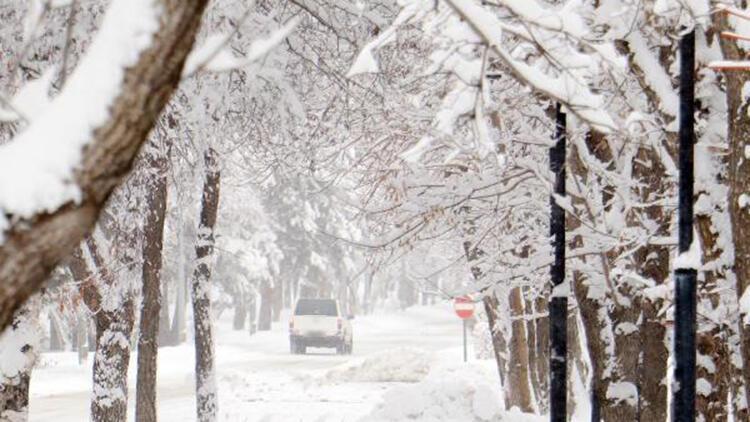 Doğu'ya bahar karı