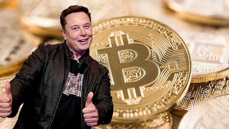 Elon Musk'ın tweet'ine güvendi, bütün varlığını bir gecede kaybetti