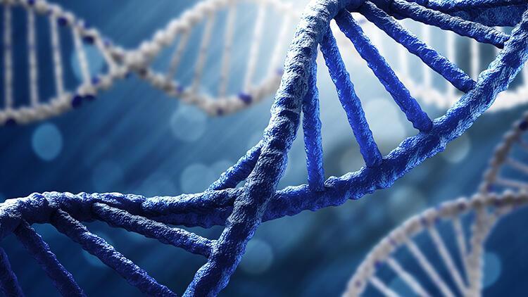 Down Sendromu kromozom sayısı nedir? Kromozom hakkında bilgiler