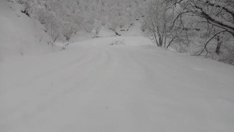 Düzce'de yüksek kesimlerde kar yağışı etkili oldu