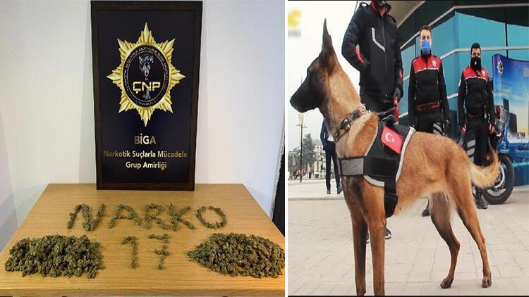 Durdurulan araçta K- 9 narkotik köpeği Lina'yla yapılan aramada uyuşturucu ele geçirildi