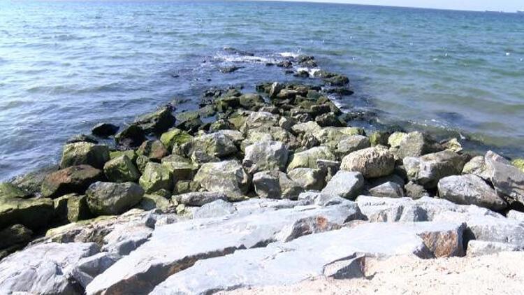 İstanbul sahillerinde sular çekildi! Depremin habercisi mi? Uzman isim yanıtladı