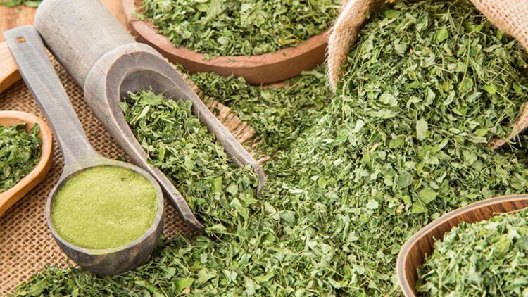 Moringa çayı nedir, nasıl tüketilir? İşte moringa çayının faydaları