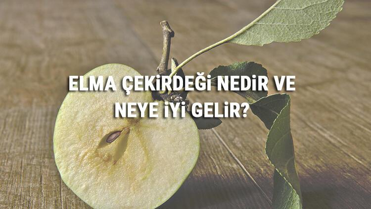 Elma Çekirdeği Nedir Ve Neye İyi Gelir? Elma Çekirdeği Faydaları