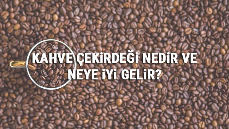 Kahve Çekirdeği Nedir Ve Neye İyi Gelir? Kahve Çekirdeği Faydaları