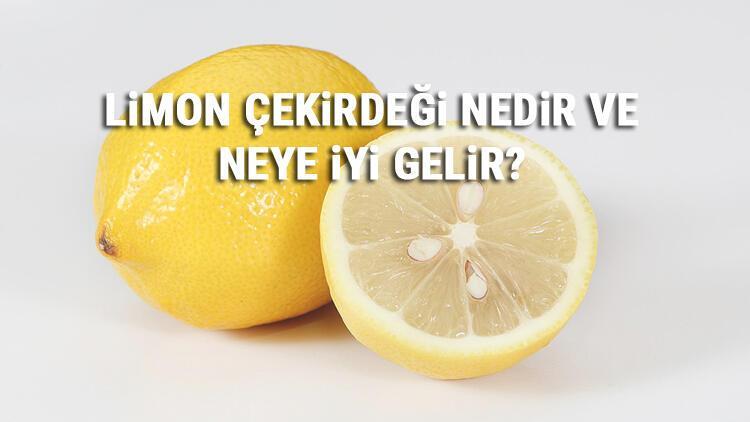Limon Çekirdeği Nedir Ve Neye İyi Gelir? Limon Çekirdeği Faydaları
