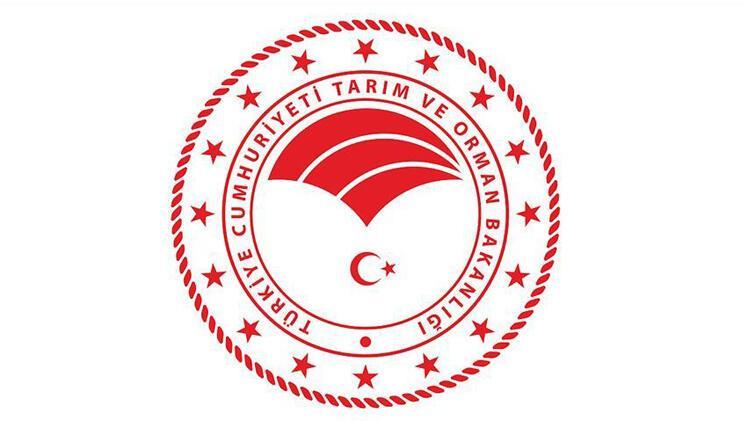 Çamlıköy Tabiat Parkı yedi yıl süreyle kiraya verilecektir