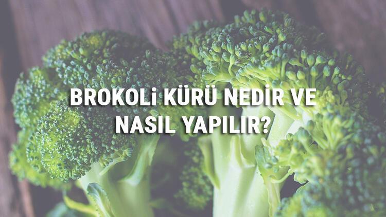 Brokoli Kürü Nedir Ve Nasıl Yapılır? Brokoli Kürü Faydaları Ve Tarifi