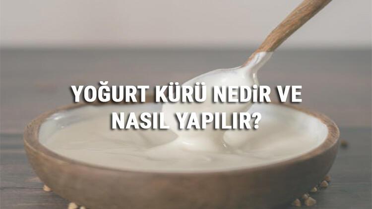 Yoğurt Kürü Nedir Ve Nasıl Yapılır? Yoğurt Kürü Faydaları Ve Tarifi